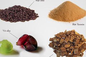 Tìm hiểu về thành phần tannin trong rượu vang
